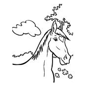 Google Kleurplaten Paarden.Kleurplaten Amika En Haar Paard Merel Studio100