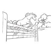 Paarden Kleurplaten Amika.Kleurplaten Amika En Haar Paard Merel Studio100