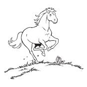 Kleurplaten Van Paard.Kleurplaten Amika En Haar Paard Merel Studio100